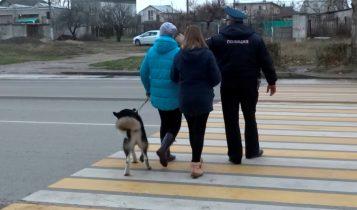 ГИБДД Керчи призывает пешеходов и водителей соблюдать ПДД